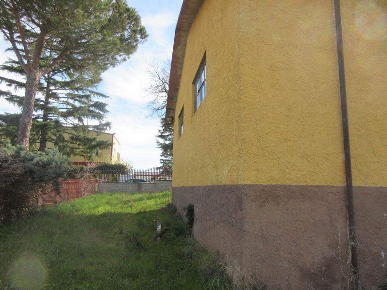 #12765 Magazzino con pertinenze in vendita - foto 6