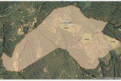 Terreni agricoli con presenza di uliveti - Lotto 12920 (Asta 12920)