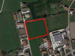 Terreno agricolo di 7.128 mq - Lotto 12946 (Asta 12946)