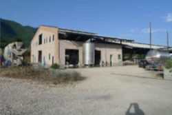 Azienda agricola con terreni - Lotto 12955 (Asta 12955)