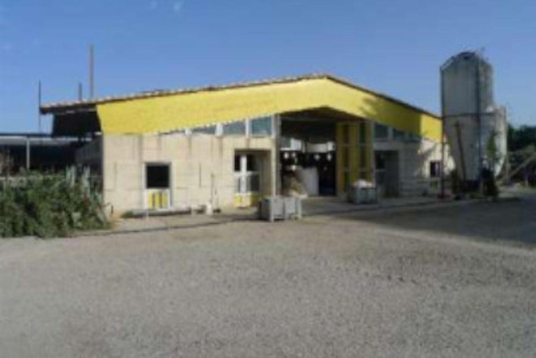 #12955 Azienda agricola con terreni in vendita - foto 2