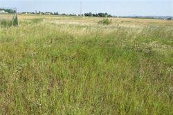 Frustolo di terreno agricolo e area urbana - Lotto 13024 (Asta 13024)