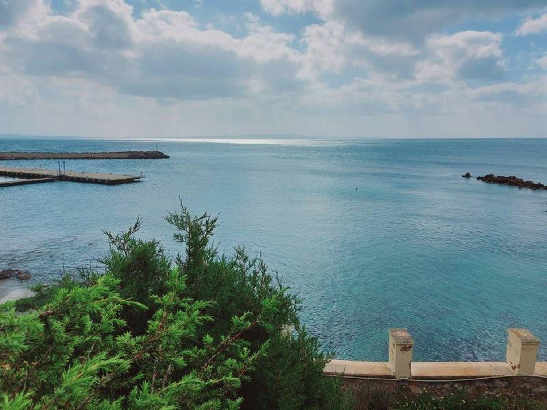 #13035 Locale emporio e depositi su isola turistica in vendita - foto 12