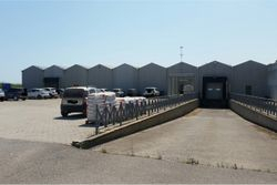 Large greenhouse structure - Lot 13059 (Auction 13059)