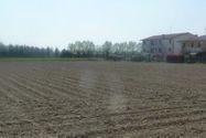 Immagine n3 - ½ parte de las tierras agrícolas - Asta 1313