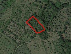 Quota di terreno agricolo di 3170 mq - Lotto 13140 (Asta 13140)