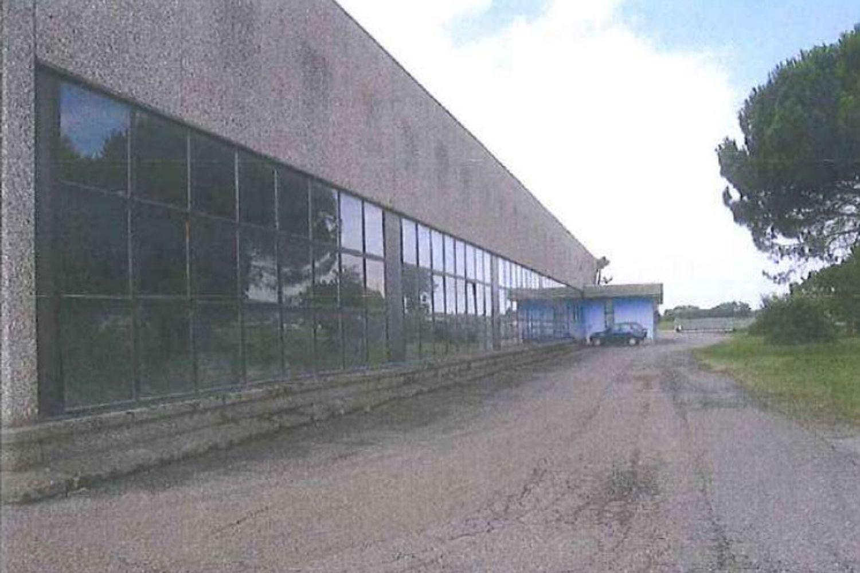 #13196 Parte di complesso industriale con pertinenze (Lotto 1A) in vendita - foto 3