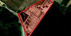 Ex stabilimento per l'itticoltura - Lotto 132 (Asta 132)
