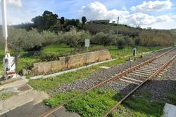 Agricultural land with olive grove near the railway - Lot 13328 (Auction 13328)