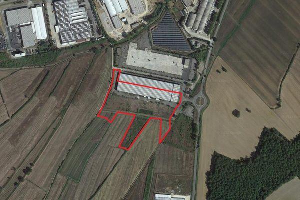 Immagine n1 - Planimetria - Vista aerea - Asta 13335