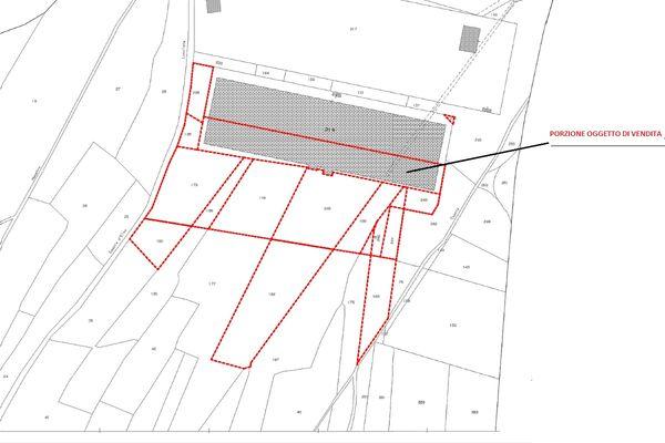 Immagine n1 - Planimetria - Elaborato proprietà - Asta 13335