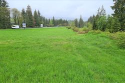Terreno agricolo con fascia di rispetto stradale - Lotto 13393 (Asta 13393)