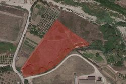 Agricultural land with partial productive use - Lot 13433 (Auction 13433)