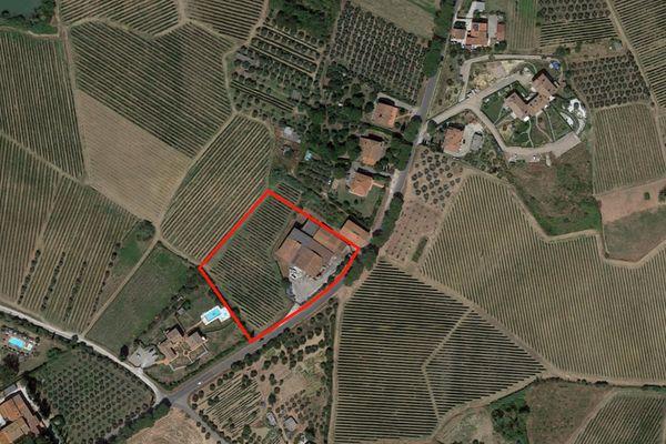 Immagine n1 - Planimetria - Vista aerea - Asta 1351