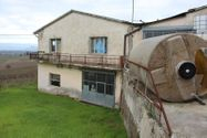 Immagine n0 - Edificio industriale e porzione di vigneto - Asta 1351