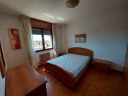 Immagine n4 - Due appartamenti e due garage - Asta 13525