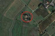 Immagine n0 - Abitazione rurale con pertinenze agricole e terreno - Asta 13578
