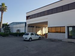 Opificio artigianale con uffici e sala esposizione - Lotto 13593 (Asta 13593)