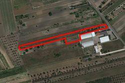 Terreno agricolo di 7925 mq - Lotto 13594 (Asta 13594)