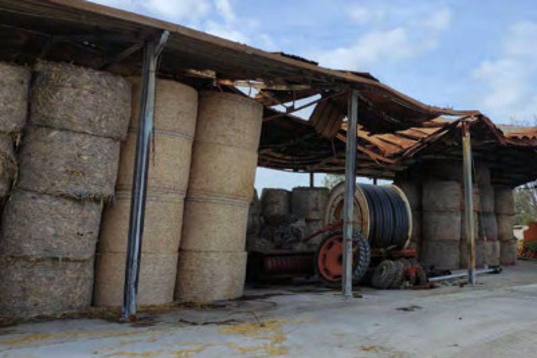 #13598 Azienda agricola bufalina in vendita - foto 3