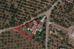 Small villa with large garden - Lot 13761 (Auction 13761)