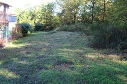 Portion of land with tall trees  lot  m  - Lot 1402 (Auction 1402)