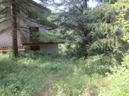 Immagine n5 - Villa unifamiliare con corte esclusiva - Asta 14044