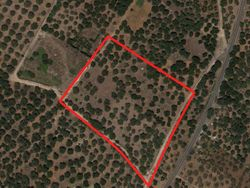 Agricultural land with olive grove  loc. Magali  - Lot 1431 (Auction 1431)