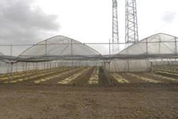 Factory with surrounding agricultural land - Lot 14487 (Auction 14487)