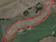 Immagine n0 - Terreno agricolo in zona collinare - Asta 1523