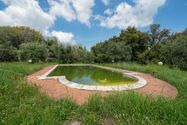Immagine n14 - Building farmhouse with pool - Asta 1531