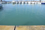 Immagine n2 - Boat berth n. 498 with parking space n. 1689 - Asta 1774