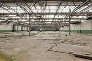 Immagine n7 - Opificio in complesso industriale - Asta 1780