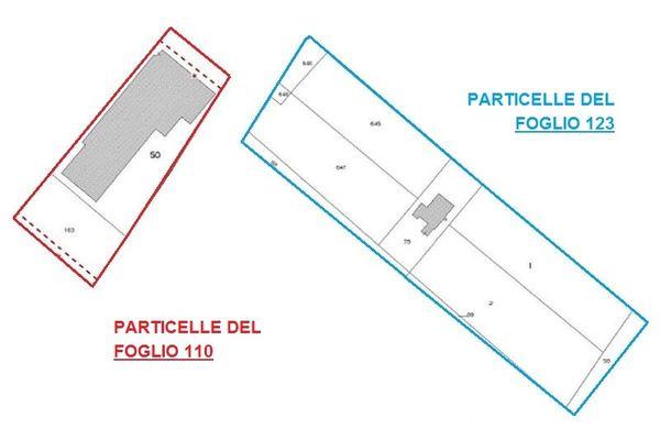 Immagine n1 - Planimetria - Estratti di mappa - Asta 1973