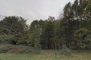 Immagine n1 - 48 terreni agricoli e boschivi sparsi - Asta 1999