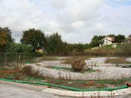 Immagine n2 - Terreno agricolo di 4283 mq - Asta 2057
