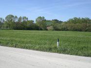 Immagine n1 - Terreno agricolo di 38000 mq - Asta 2090
