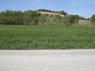 Immagine n2 - Terreno agricolo di 38000 mq - Asta 2090