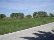 Immagine n3 - Terreno agricolo di 38000 mq - Asta 2090