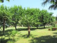 Immagine n12 - Villa con giardino alberato e magazzino - Asta 2165