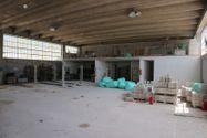 Immagine n2 - Capannone con uffici ed alloggio custode - Asta 2292