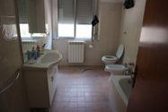 Immagine n7 - Capannone con uffici ed alloggio custode - Asta 2292