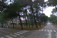 Immagine n0 - Terreno edificabile a Milano Marittima. Cervia (RA) - Asta 234