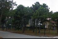 Immagine n2 - Terreno edificabile a Milano Marittima. Cervia (RA) - Asta 234