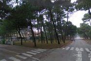 Immagine n6 - Terreno edificabile a Milano Marittima. Cervia (RA) - Asta 234
