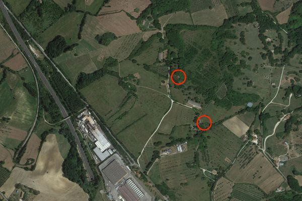 Immagine n1 - Planimetria - Vista aerea - Asta 2659