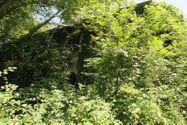 Immagine n4 - Fabbricati diroccati e terreni annessi - Asta 2659