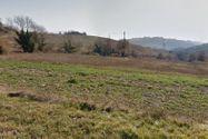 Immagine n4 - 100% di quote di terreni agricoli ed edificabili con due casali - Asta 2661