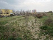 Immagine n3 - Building land of 28,728 square meters - Asta 2749