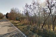 Immagine n3 - Terreno industriale edificabile di 28.460 mq - Asta 2814